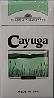 Cayuga Menthol Ultra Light 100 Box