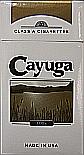 Cayuga Gold Light 100 Box