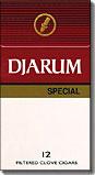 DJARUM SPECIAL BOX FILTERED CLOVE CIGARS